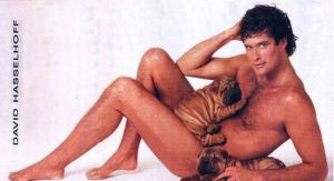 David Hasselhoff forgot his clothes